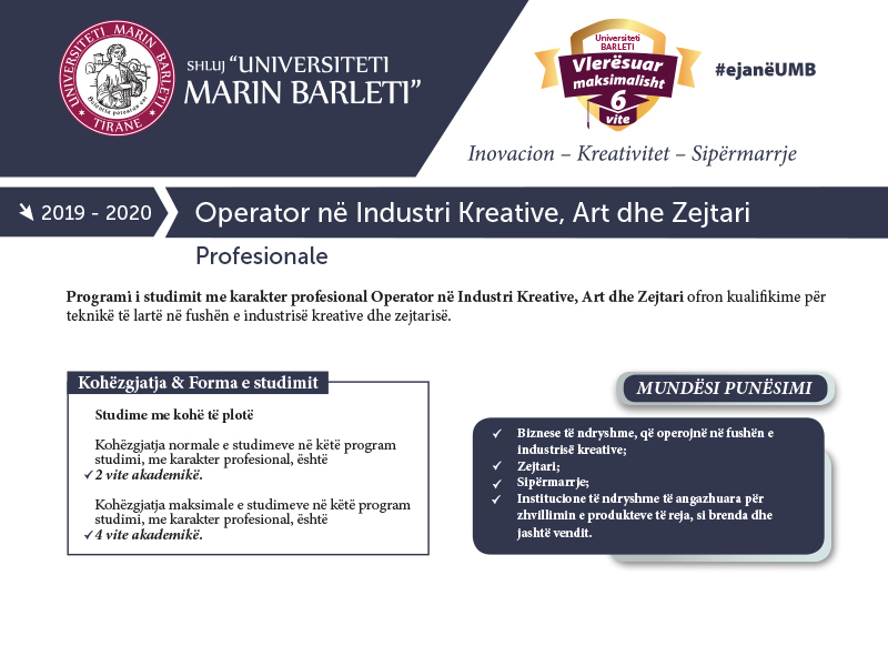 VOLANT-PROFESIONAL-Operator-ne-Industri-Kreative-Art-Zejtari